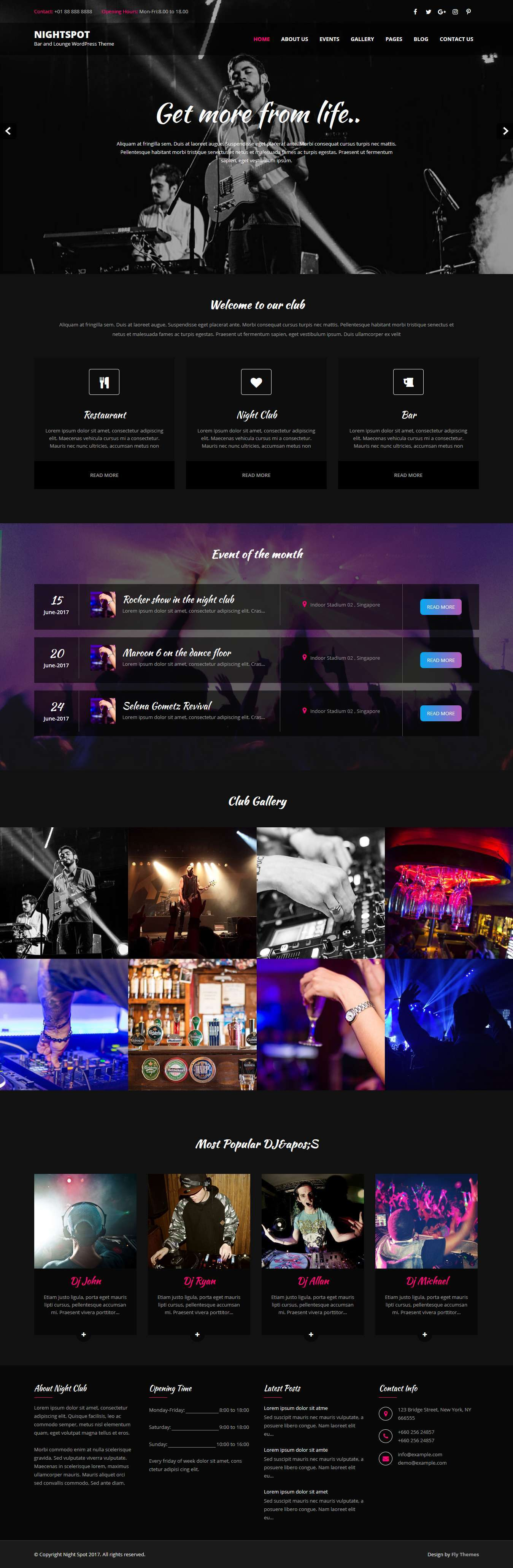 Nightspot WordPress Theme