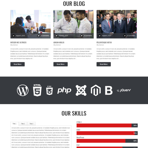 precious-lite-wordpress-theme