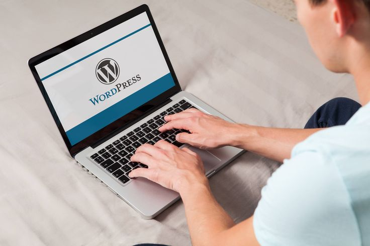 Investing in Their WordPress Site